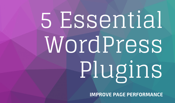 Wordpress Plugins to improve page performance, theme development and debugging